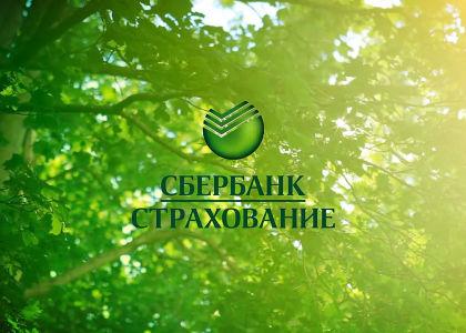 Страховой полис ОСАГО от Сбербанка: достоинства