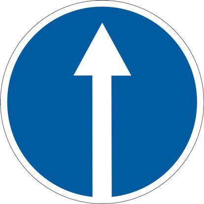 Как накажут за игнорирование знака движение прямо?