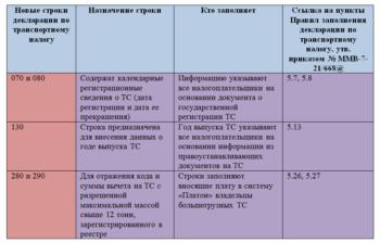 строки, которые нужно заполнять в декларации